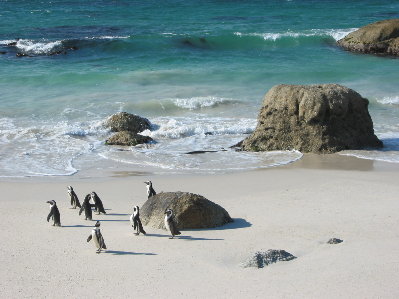 South Africa - Travel Bucket List Countries