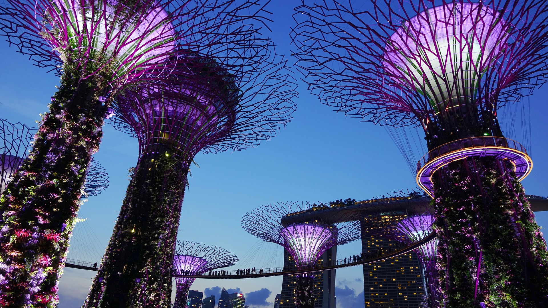 Gardens by the Bay - How to Spend 3 Days in Singapore